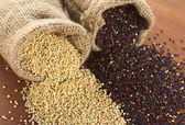 Raw Quinoa Grains in Jute Sack — Stock Photo