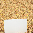 Raw Dried Lentils with a Blank Card - Stock Photo