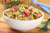 Vegetarian Quinoa Salad — Stock Photo