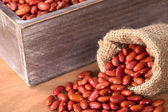 Raw Red Kidney Beans in Jute Sack and Wooden Box — Stock Photo