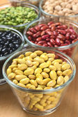 Canary Beans and Other Legumes — Stock Photo
