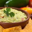 Fresh Guacamole — Stock Photo #6214079