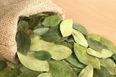 Dried Coca Leaves in Jute Sack — Stock Photo