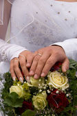 Hands of newlyweds. — Stock Photo