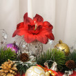 Christmas Arrangement — Stock Photo #5812034