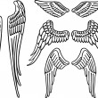 Stockvector : Angel wings