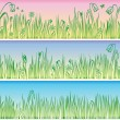 Grass and flowers vector illustration — Stock Vector