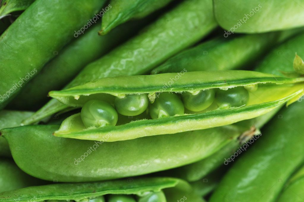 Freshly picked sweet  green peas.  peas in open pods — Stock Photo #6205190