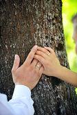 Bruid en bruidegom handen — Stockfoto