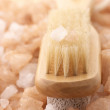 Bath salt and brush - Stock Photo