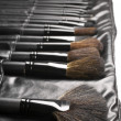 Set of make-up brushes — Stock Photo #5447547