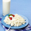 Cottage cheese and milk — Stock Photo