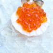 Salmon caviar in shell - Stock Photo