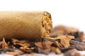 Cigar and tobacco — Stock Photo