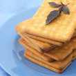 Crackers with basil in plate — Stock Photo