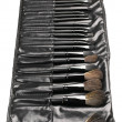Set of make-up brushes — Stock Photo