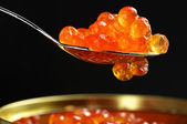 Salmon caviar close-up — 图库照片