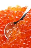 Salmon caviar close-up — Stock Photo