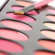 Blushes palette and brush — Stockfoto