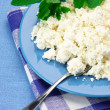 Cottage cheese with mint — Stock Photo