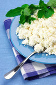 Cottage cheese with mint — Stockfoto