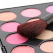 Stock Photo: Blushes palette and brush