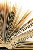 Primer plano de libro abierto — Foto de Stock