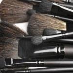 Set of make-up brushes — Stock Photo #6491771