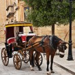 Tourist chariot in the Old City of Mdina, Malta — Stock Photo