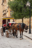 Tourist chariot in the Old City of Mdina, Malta — Стоковое фото