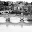 Tiber River. Rome — Stock Photo