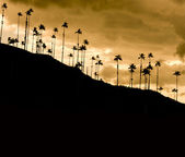 Dramatic sunset in Cocora valley, Colombia — Stock Photo