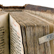 The ancient book — Stock Photo #5516112