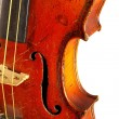 The violin — Stock Photo