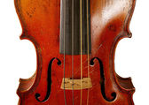 The violin — Stockfoto