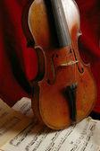 The violin — Stock Photo