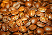 Coffee beans background — Photo