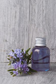 Rosemary shampoo. — Stock Photo