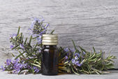 Rosemary with flowers. — Stock Photo