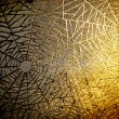 Cobwebs - Stock Photo