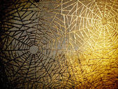 Cobwebs — Stock Photo