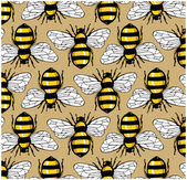 Bee honey pattern — Stock Vector