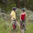 Stock Photo: Healthy Couple on Bikes in a Forest
