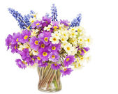 Sprigs Muscari and Primroses flowers in small glass — Stock Photo