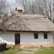 Rural uninhabited Ukrainian house — Stock Photo