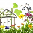 Stock Photo: Sweet green home concept