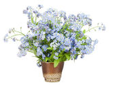 Bouquet from Forget-me-nots (Myosotis) — Stock Photo