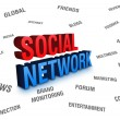 Stock Photo: Social Network