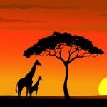 Giraffe silhouette in wildlife Africa — Stock Vector