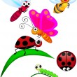 Stock Vector: Cute Insect cartoon